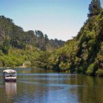 Premier séjour en Nouvelle-Zélande : 4 sites d'intérêt à voir absolument